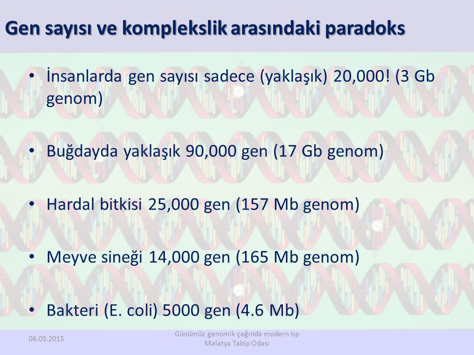 Gen sayısı ve komplekslik arasındaki paradoks