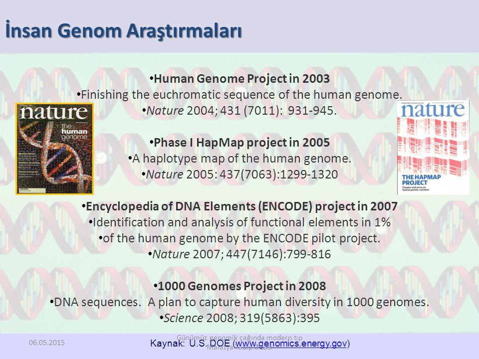 İnsan Genom Araştırmaları