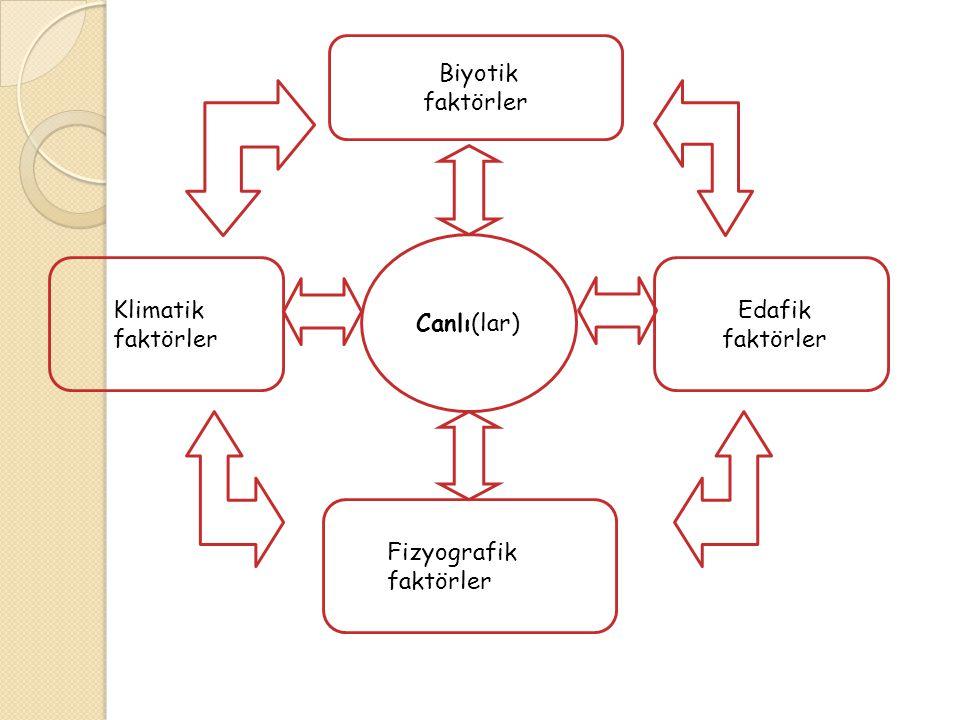 Canlı(lar) Edafik faktörler Biyotik Fizyografik faktörler Klimatik faktörler