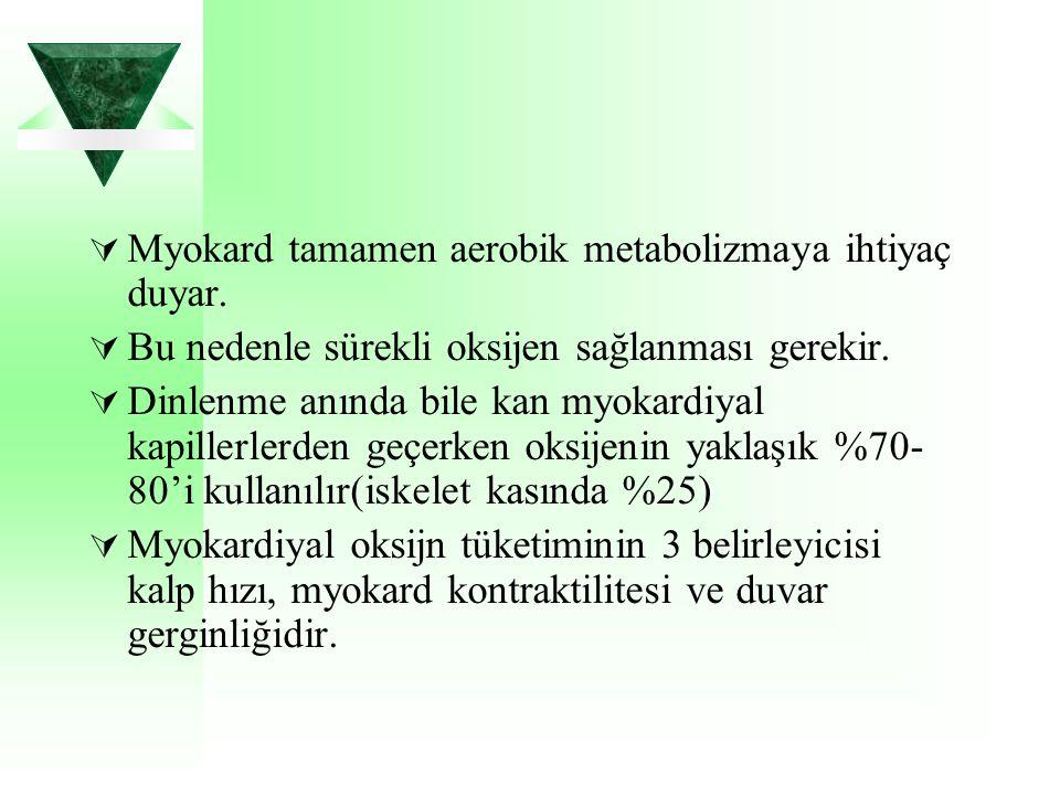Myokard tamamen aerobik metabolizmaya ihtiyaç duyar.