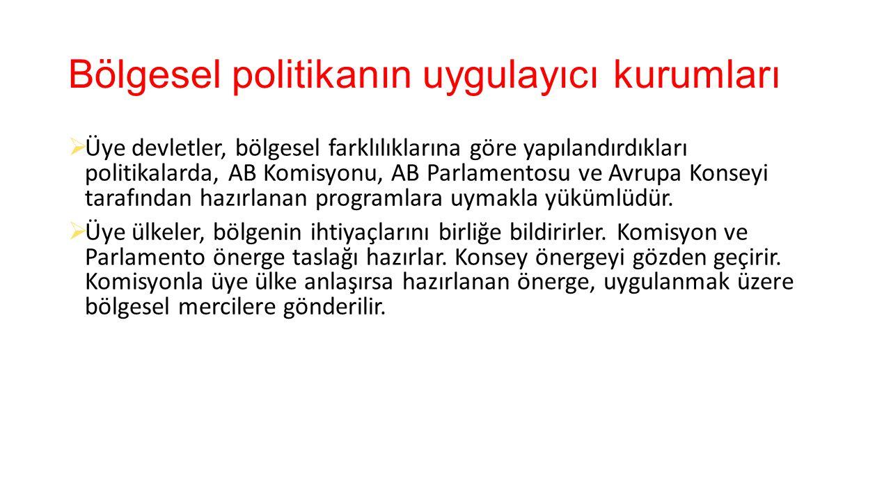 Bölgesel politikanın uygulayıcı kurumları