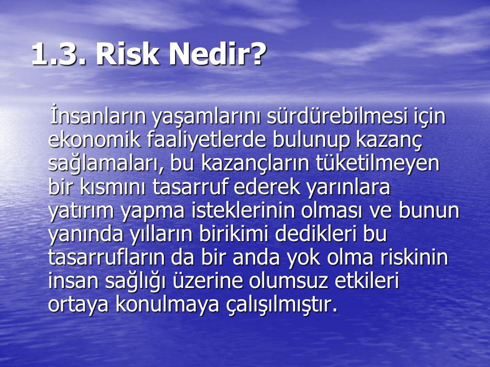 1.3. Risk Nedir