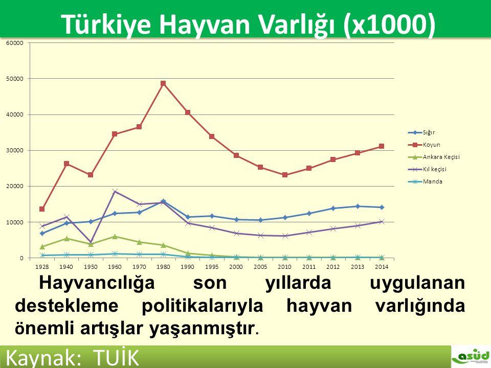 Türkiye hayvan varlığı (x1000)