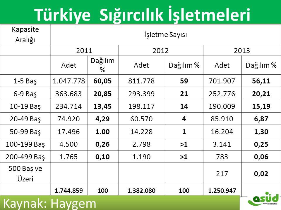 Türkiye Sığırcılık İşletmeleri