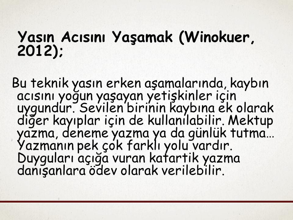 Yasın Acısını Yaşamak (Winokuer, 2012);