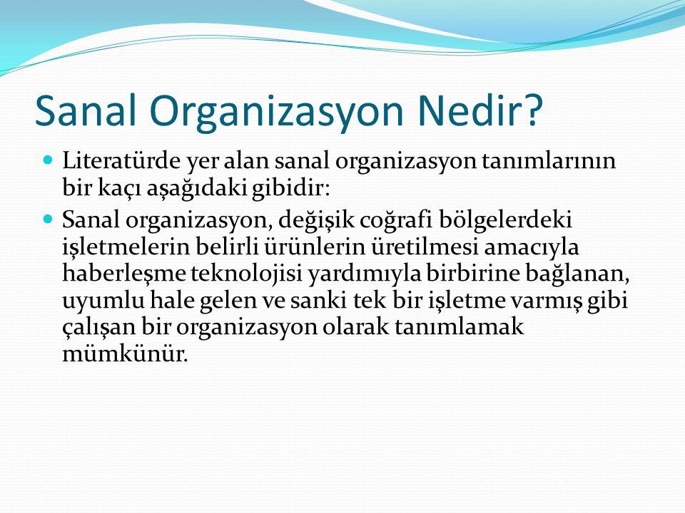 Sanal Organizasyon Nedir