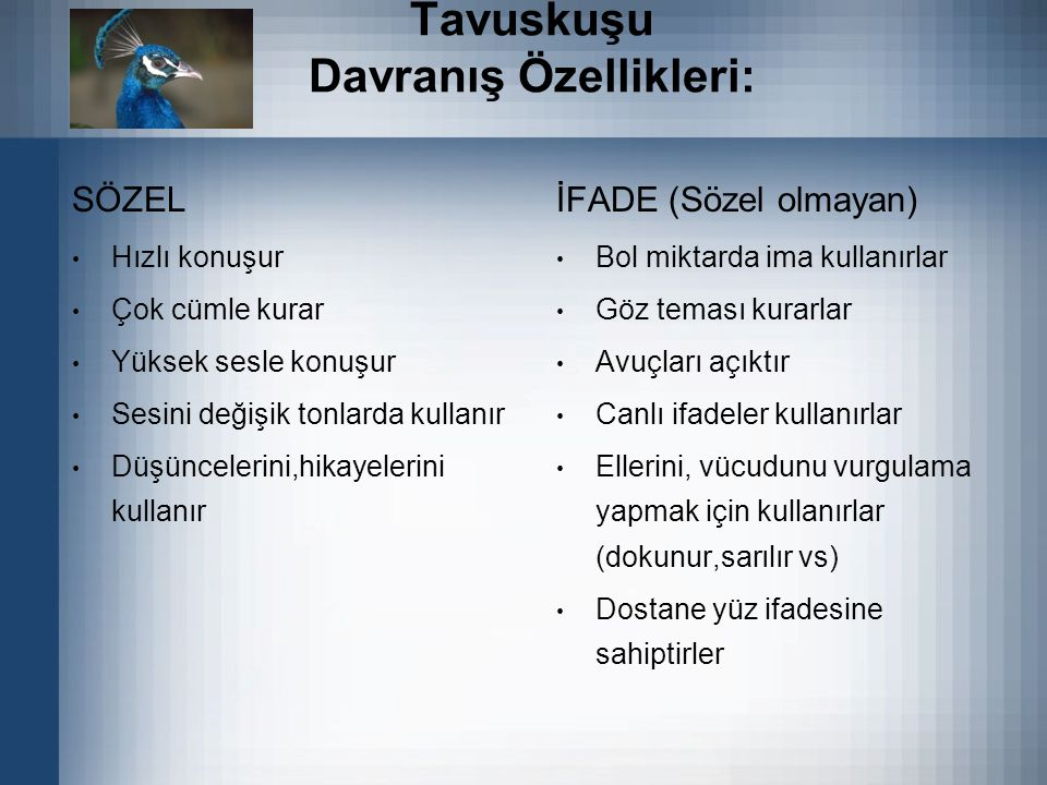 Tavuskuşu Davranış Özellikleri: