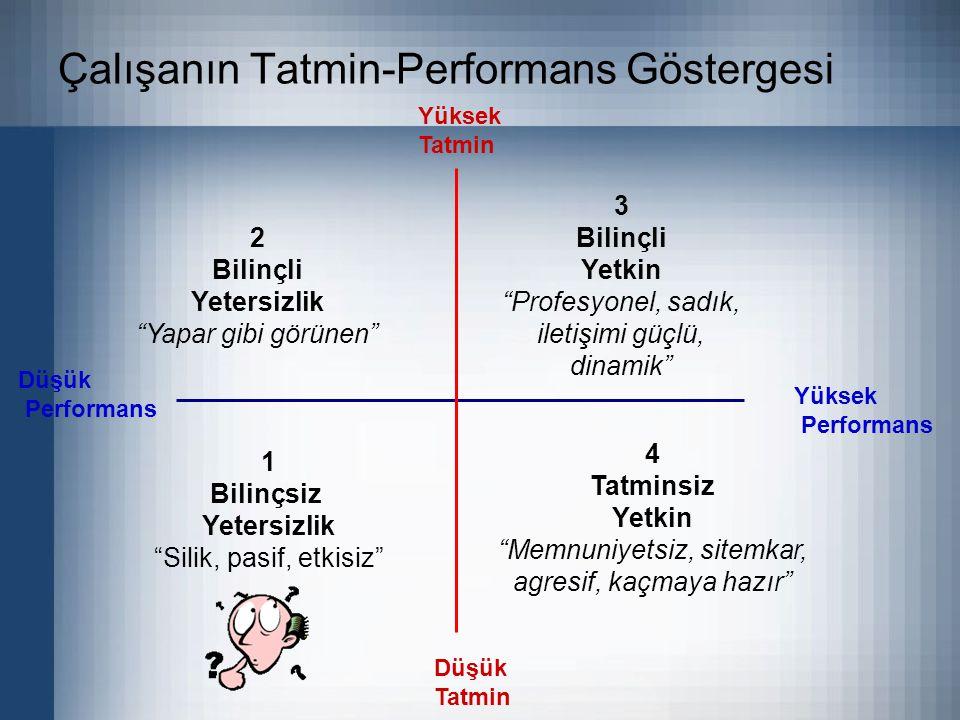 Çalışanın Tatmin-Performans Göstergesi