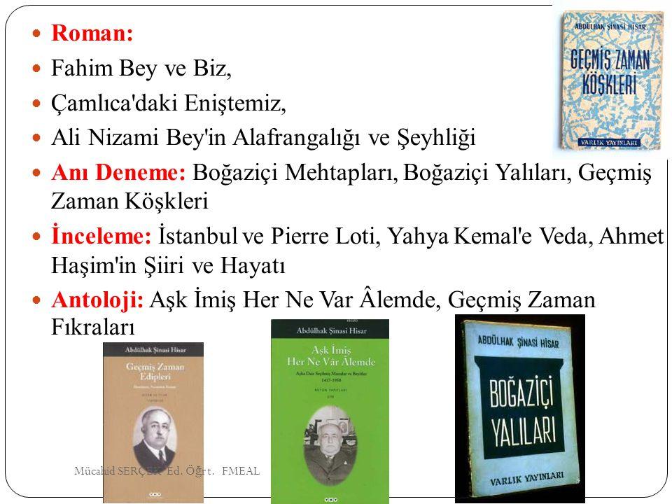 Çamlıca daki Eniştemiz, Ali Nizami Bey in Alafrangalığı ve Şeyhliği