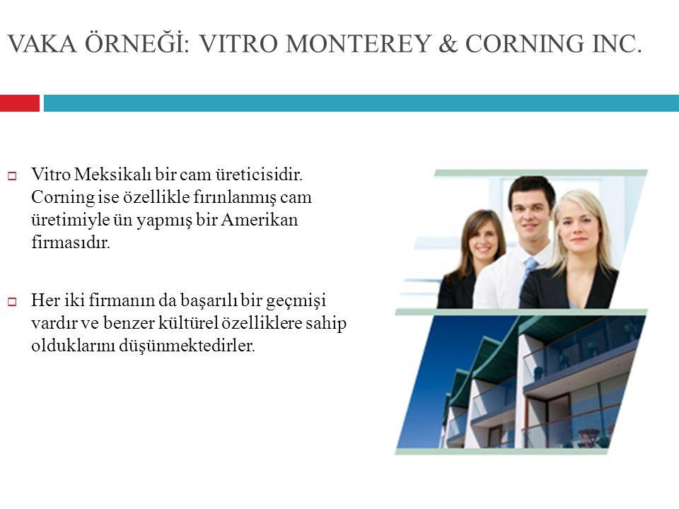 VAKA ÖRNEĞİ: VITRO MONTEREY & CORNING INC.