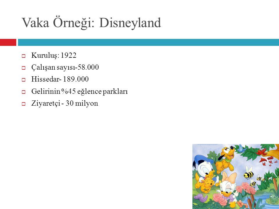 Vaka Örneği: Disneyland