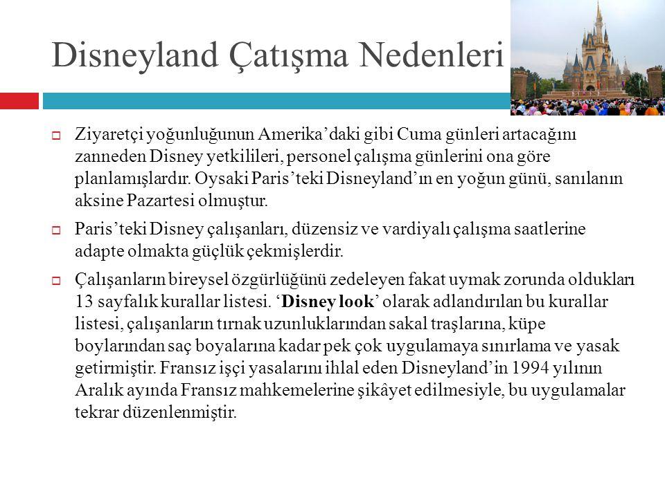 Disneyland Çatışma Nedenleri