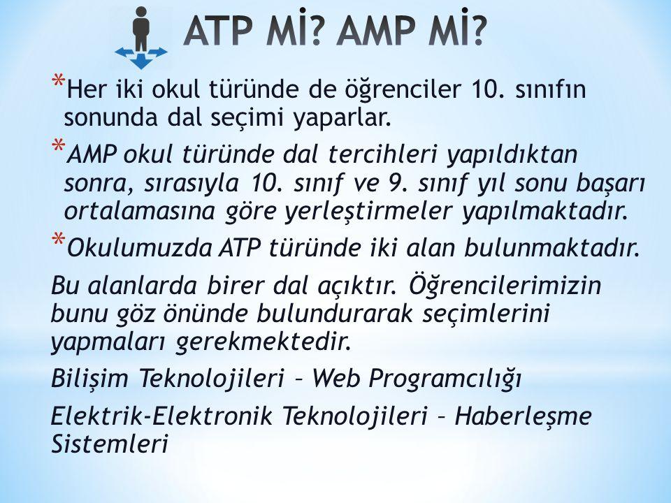 ATP Mİ AMP Mİ Her iki okul türünde de öğrenciler 10. sınıfın sonunda dal seçimi yaparlar.