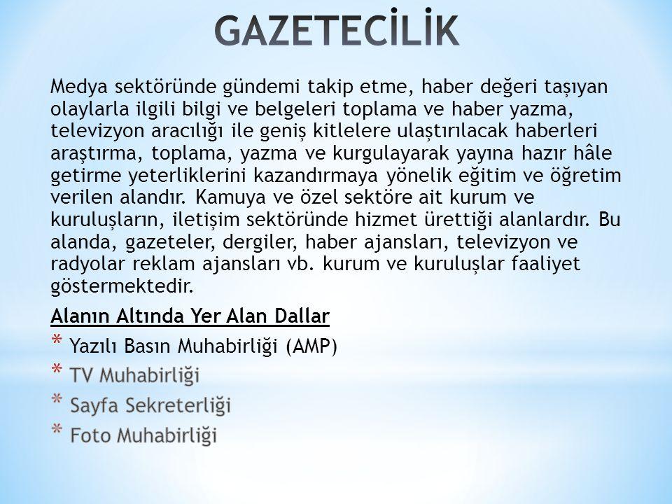 GAZETECİLİK