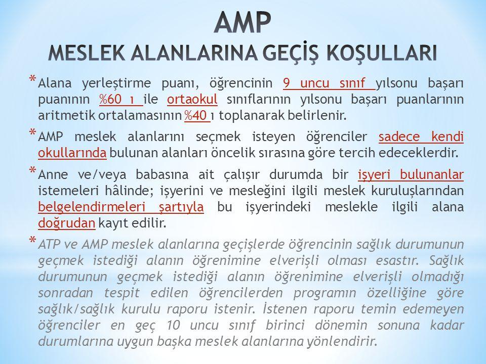 AMP MESLEK ALANLARINA GEÇİŞ KOŞULLARI