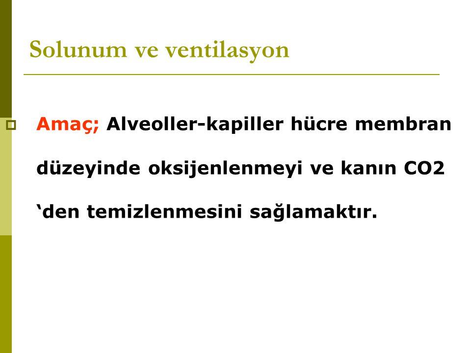 Solunum ve ventilasyon