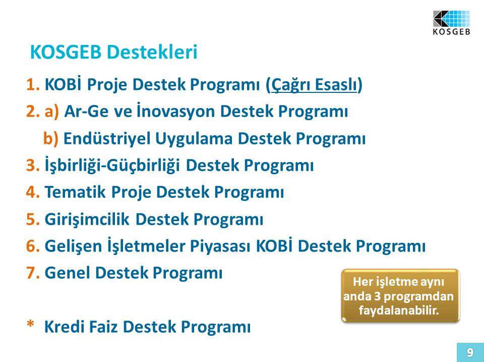 Her işletme aynı anda 3 programdan faydalanabilir.