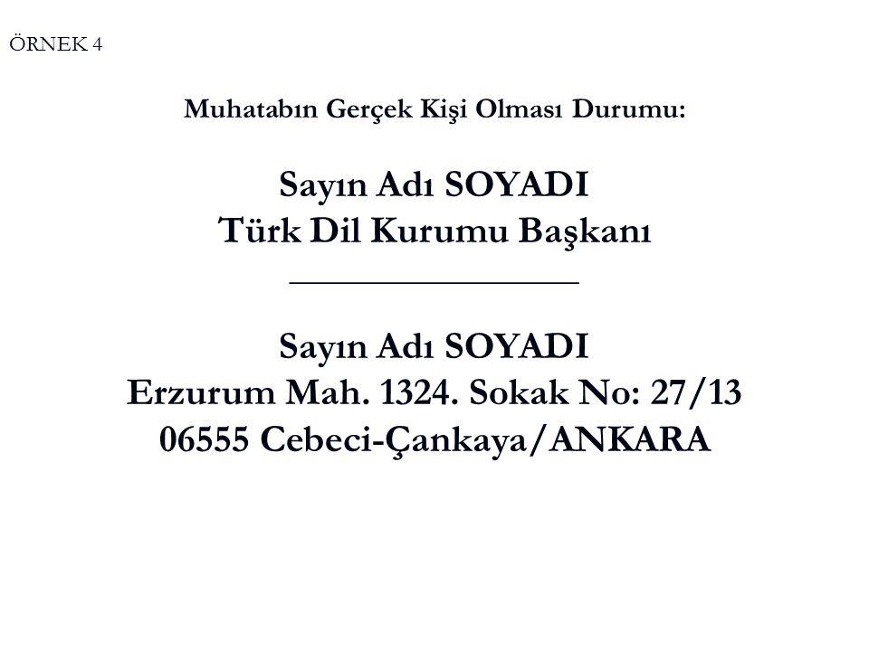 Türk Dil Kurumu Başkanı