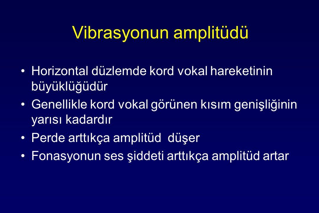 Vibrasyonun amplitüdü