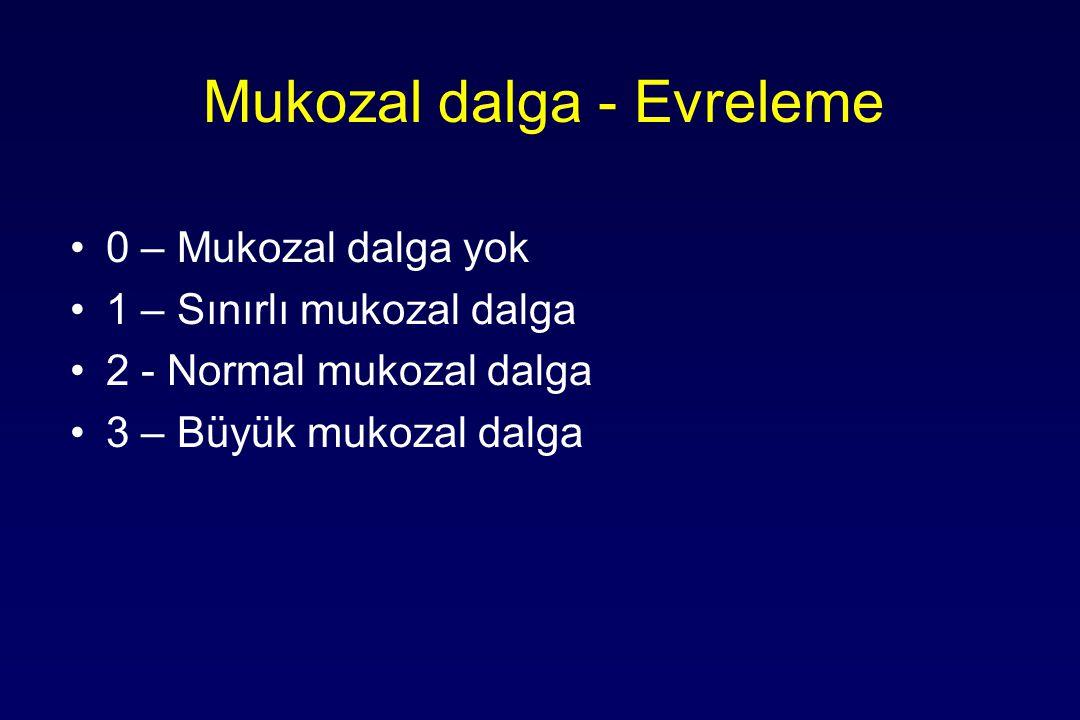 Mukozal dalga - Evreleme