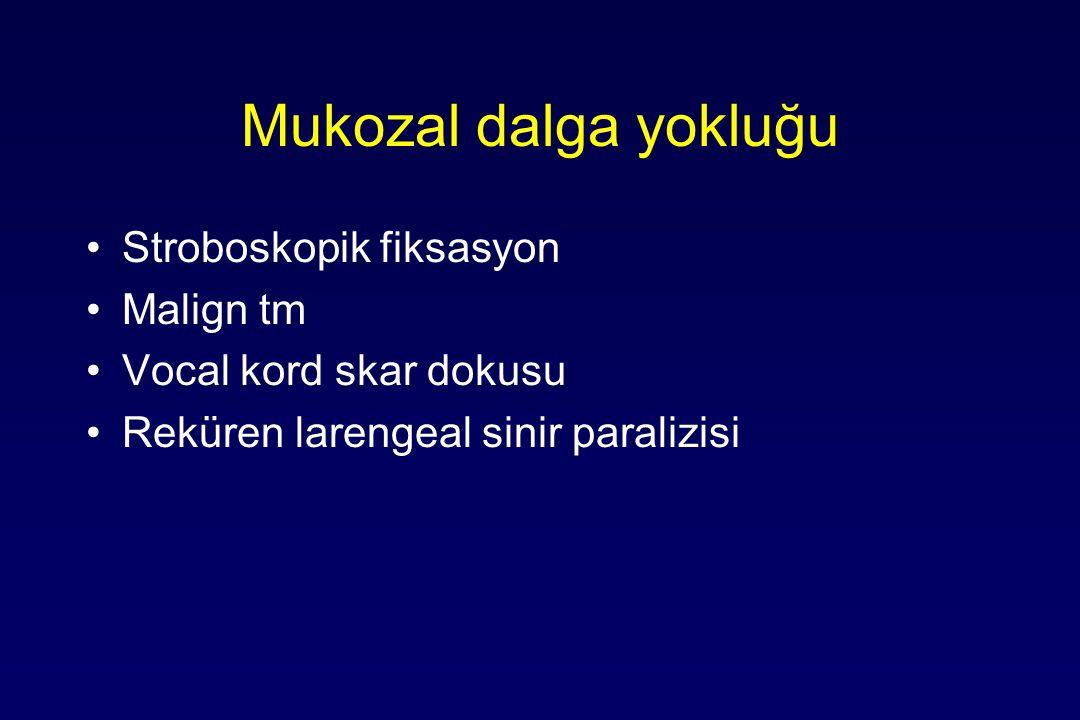 Mukozal dalga yokluğu Stroboskopik fiksasyon Malign tm