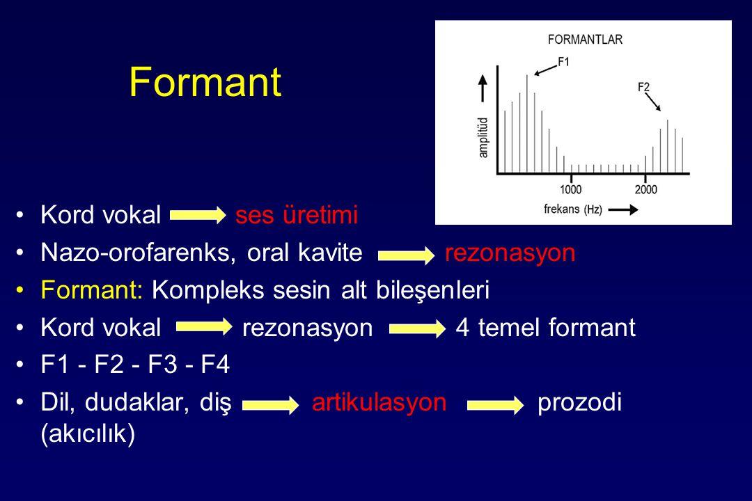 Formant Kord vokal ses üretimi Nazo-orofarenks, oral kavite rezonasyon