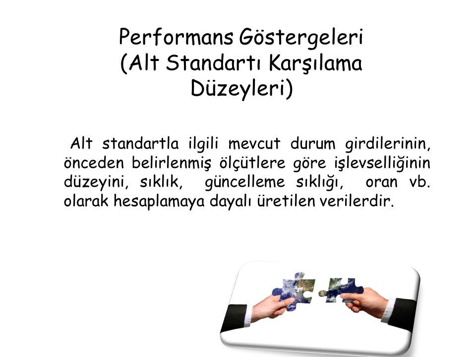 Performans Göstergeleri (Alt Standartı Karşılama Düzeyleri)