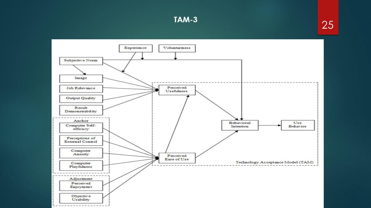 TAM-3