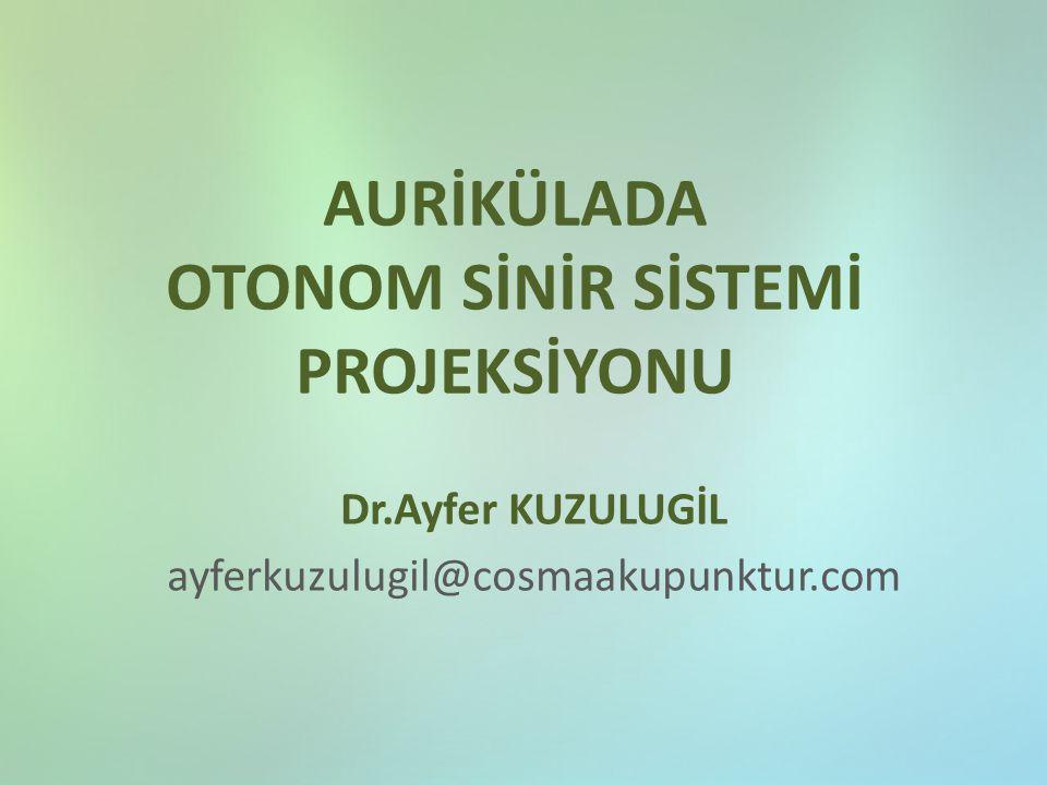 AURİKÜLADA OTONOM SİNİR SİSTEMİ PROJEKSİYONU