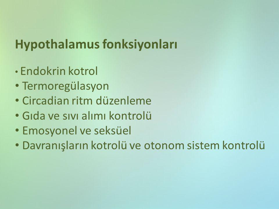 Hypothalamus fonksiyonları