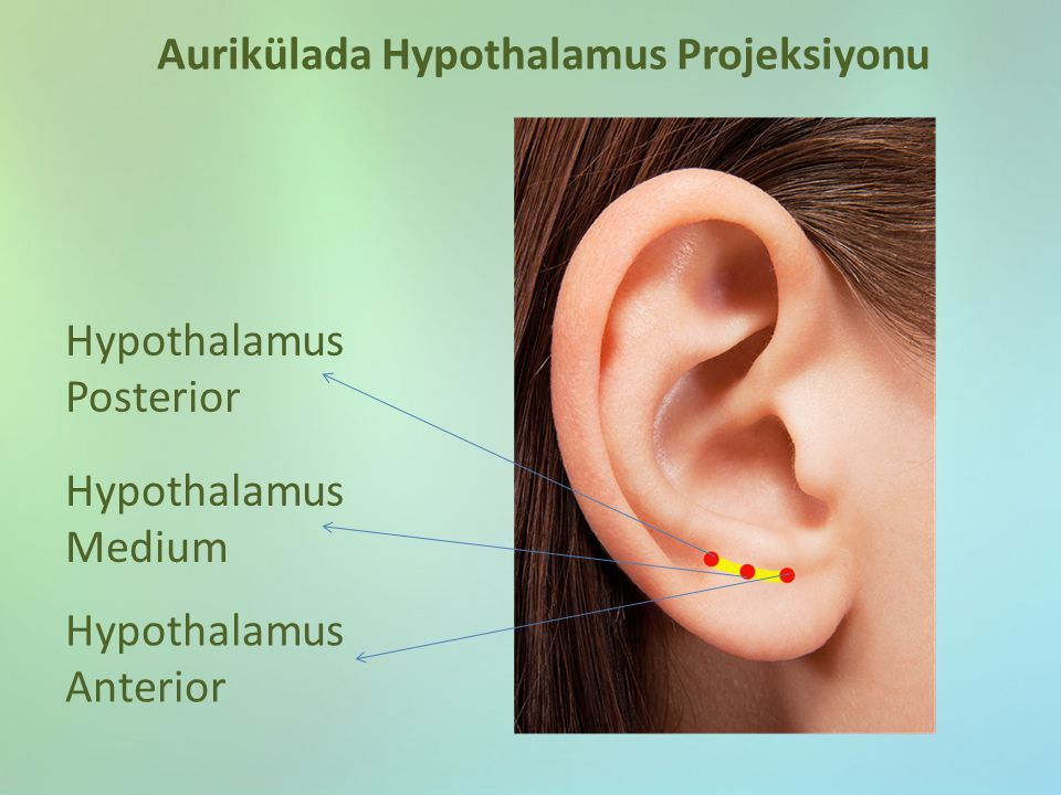Aurikülada Hypothalamus Projeksiyonu