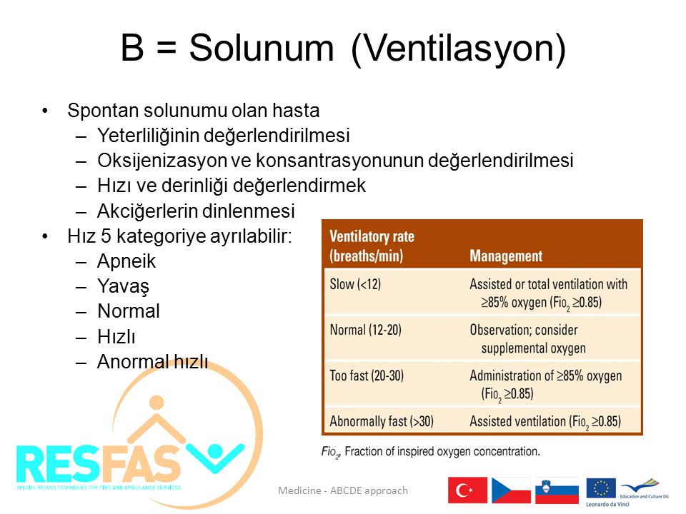 B = Solunum (Ventilasyon)