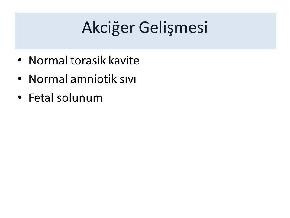 Akciğer Gelişmesi Normal torasik kavite Normal amniotik sıvı