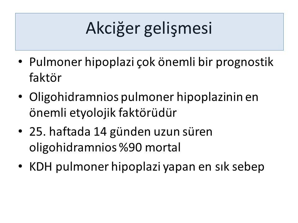 Akciğer gelişmesi Pulmoner hipoplazi çok önemli bir prognostik faktör