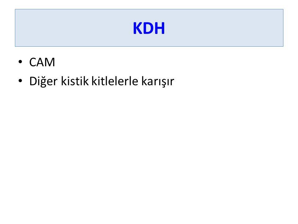 KDH CAM Diğer kistik kitlelerle karışır