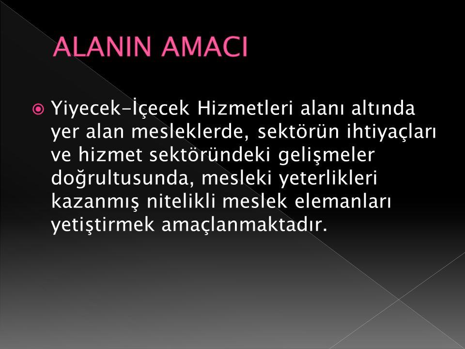 ALANIN AMACI