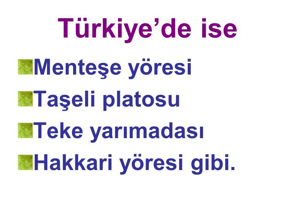 Türkiye'de ise Menteşe yöresi Taşeli platosu Teke yarımadası