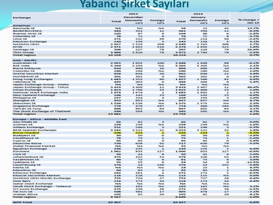 Yabancı Şirket Sayıları