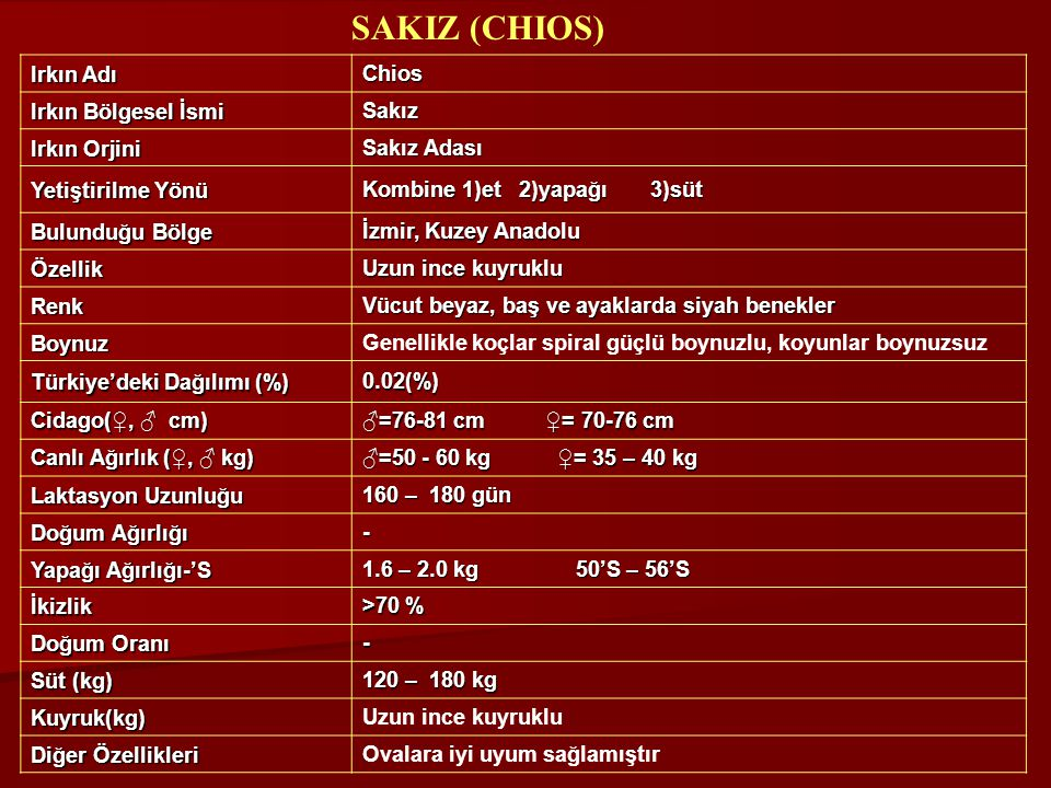 SAKIZ (CHIOS) Irkın Adı Chios Irkın Bölgesel İsmi Sakız Irkın Orjini