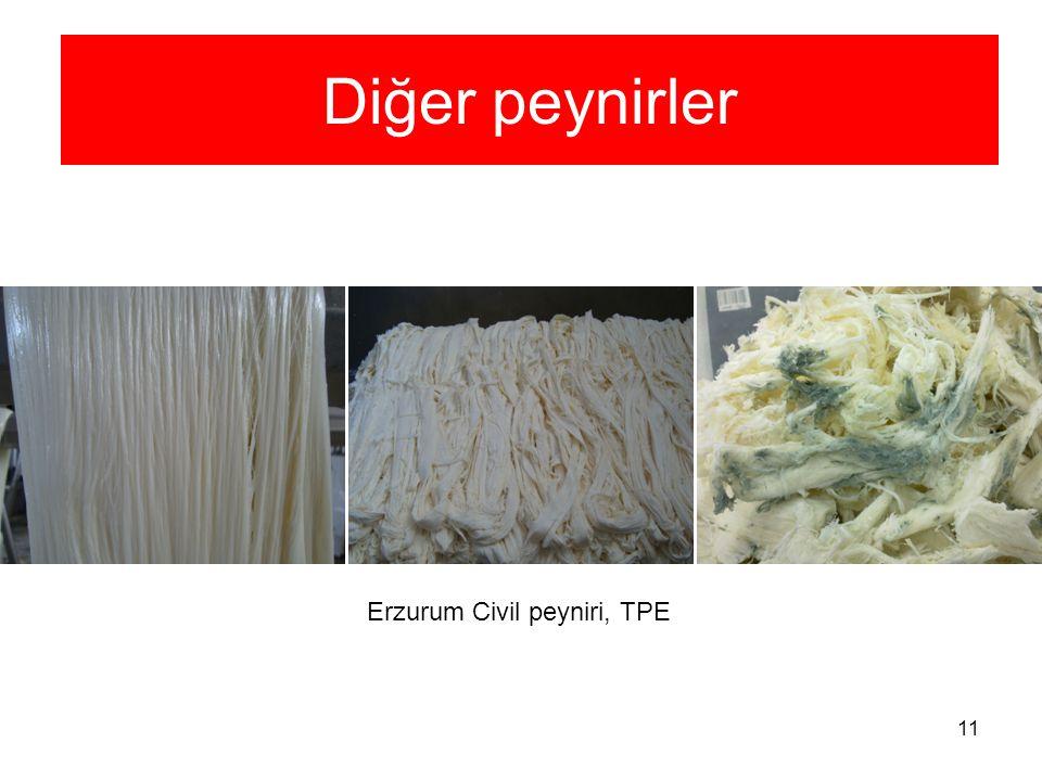 Diğer peynirler Erzurum Civil peyniri, TPE