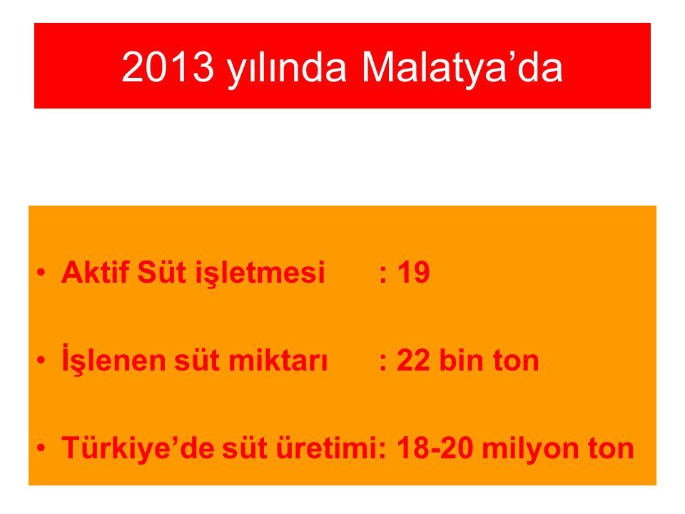 2013 yılında Malatya'da Aktif Süt işletmesi : 19