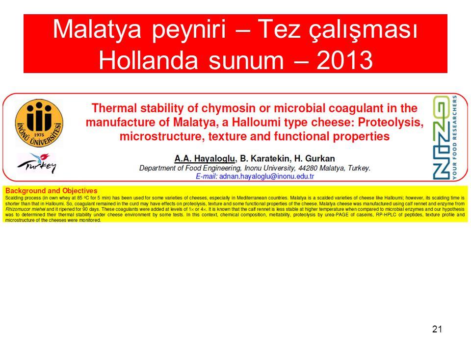 Malatya peyniri – Tez çalışması Hollanda sunum – 2013