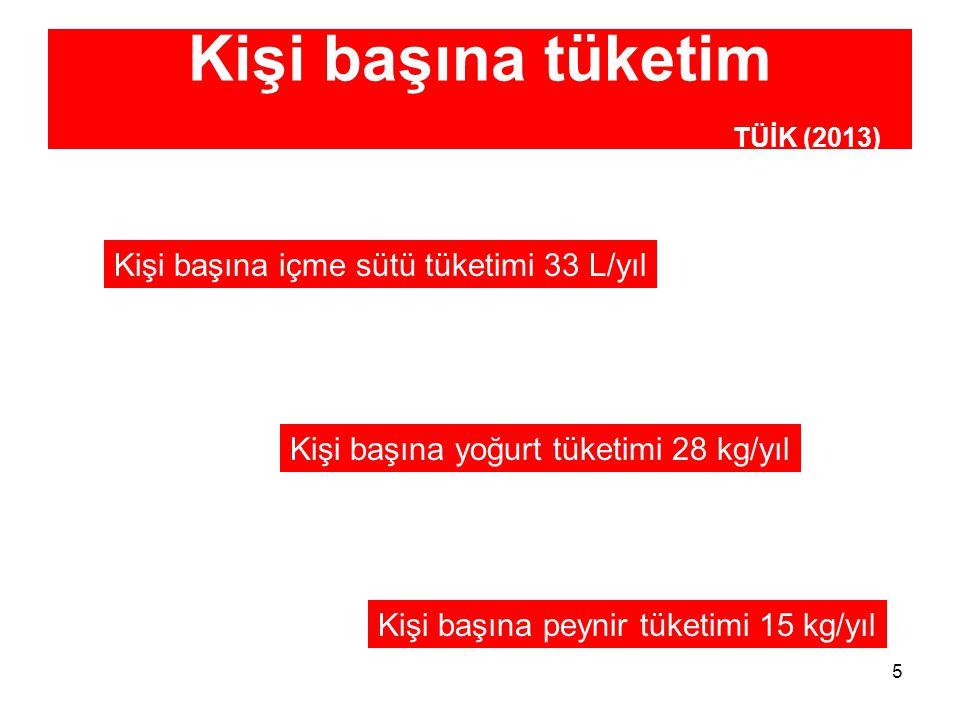 Kişi başına tüketim TÜİK (2013)