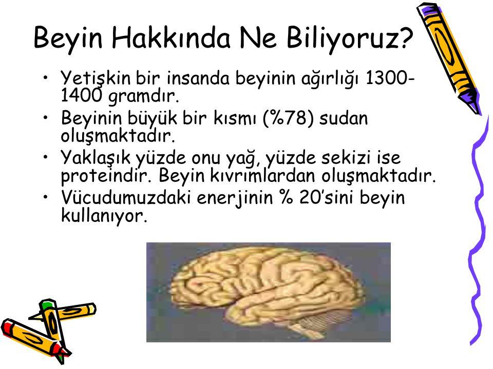 Beyin Hakkında Ne Biliyoruz