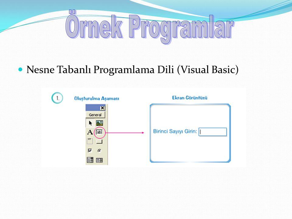 Örnek Programlar Nesne Tabanlı Programlama Dili (Visual Basic)