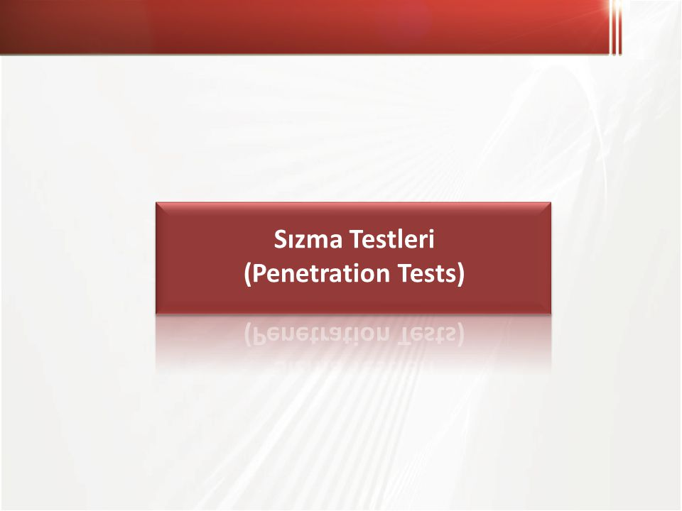Sızma Testleri (Penetration Tests)
