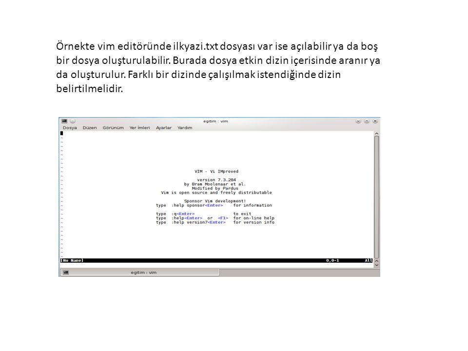Örnekte vim editöründe ilkyazi