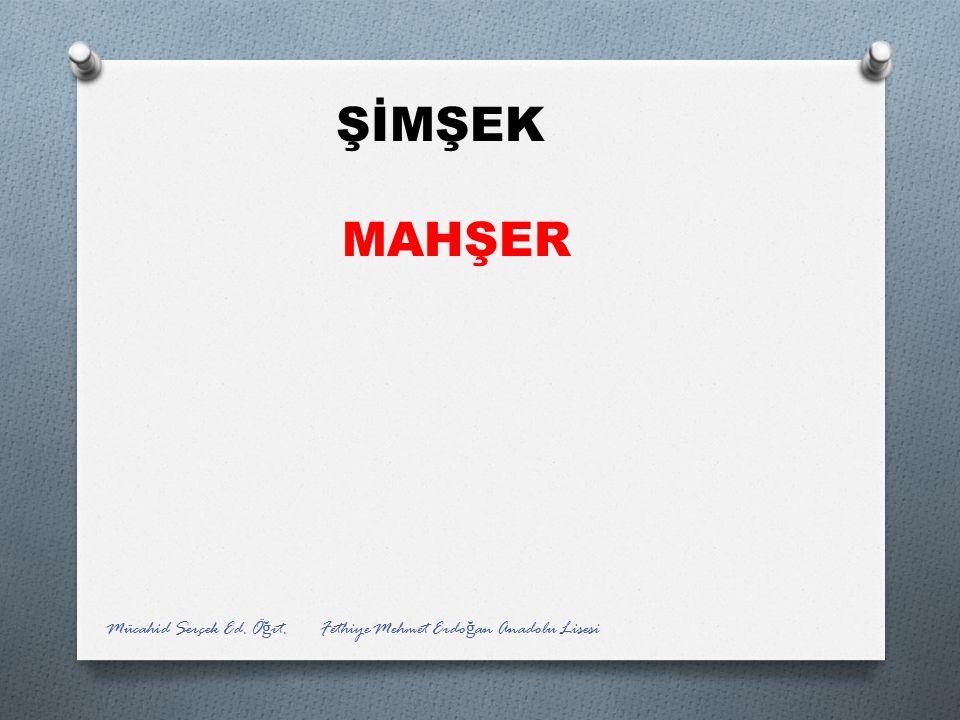 ŞİMŞEK MAHŞER Mücahid Serçek Ed. Öğrt. Fethiye Mehmet Erdoğan Anadolu Lisesi