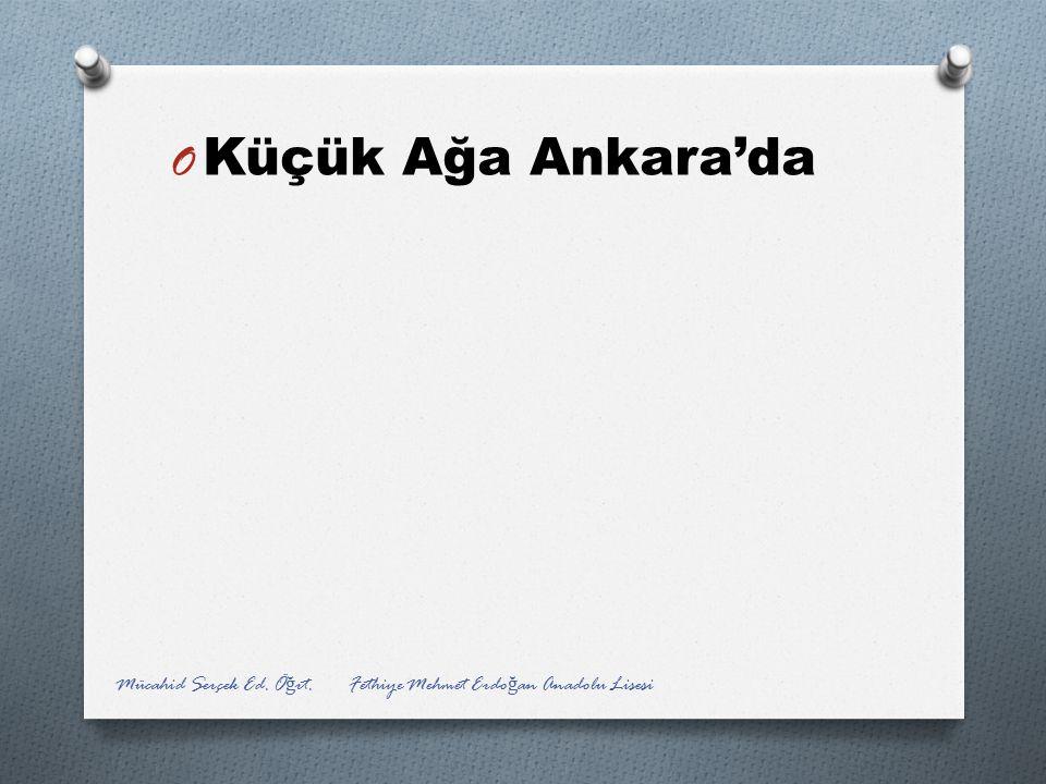 Küçük Ağa Ankara'da Mücahid Serçek Ed. Öğrt. Fethiye Mehmet Erdoğan Anadolu Lisesi