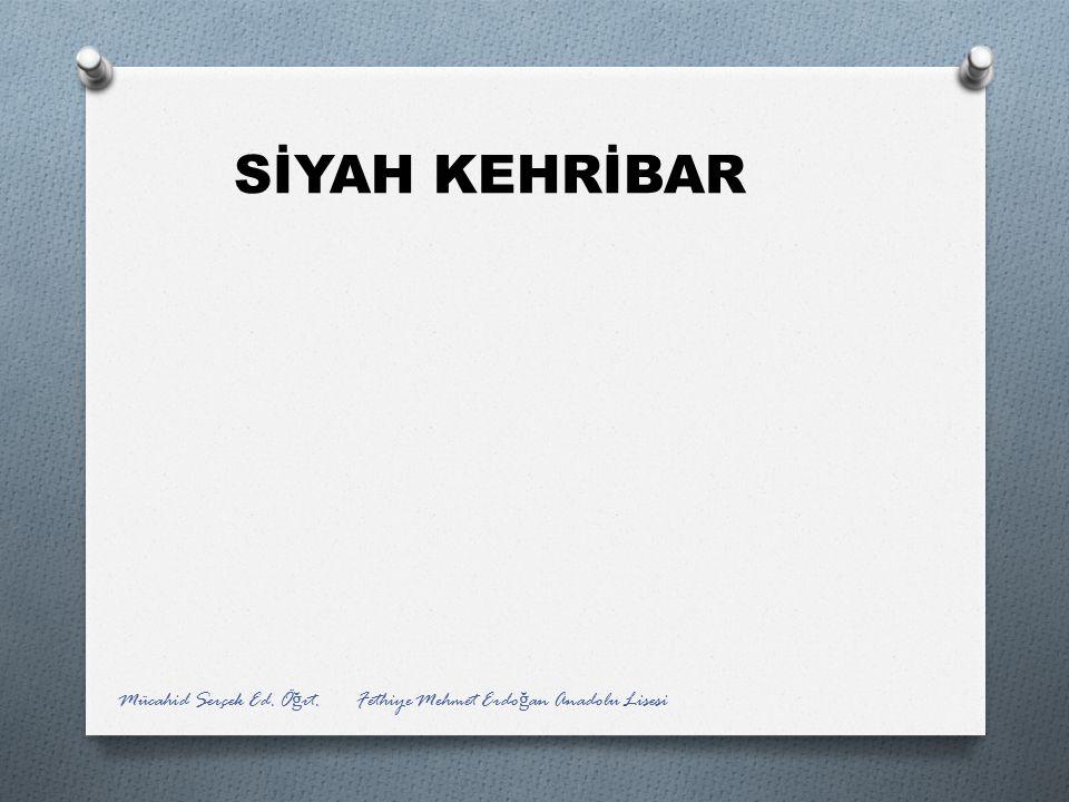 SİYAH KEHRİBAR Mücahid Serçek Ed. Öğrt. Fethiye Mehmet Erdoğan Anadolu Lisesi